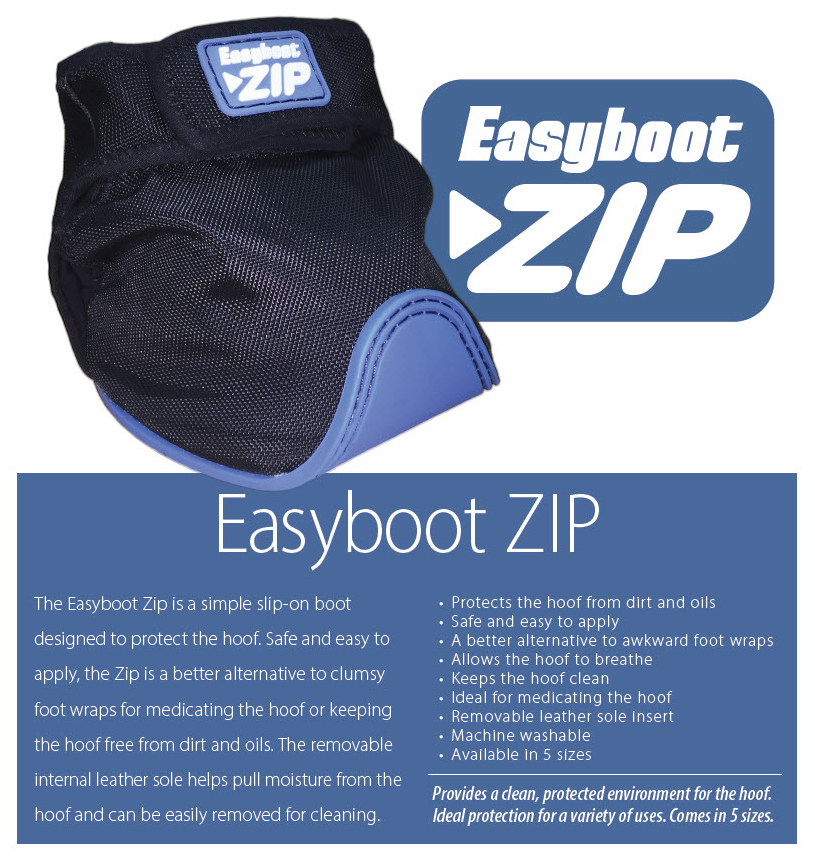 Zip Boot Banner ad